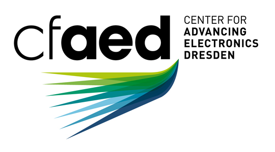 cfaed_logo_gross